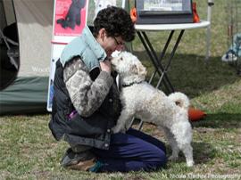 Dog Training2