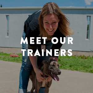 MeetOurTrainers