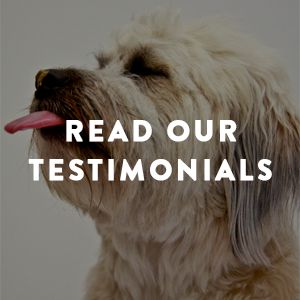 ReadOurTestimonials