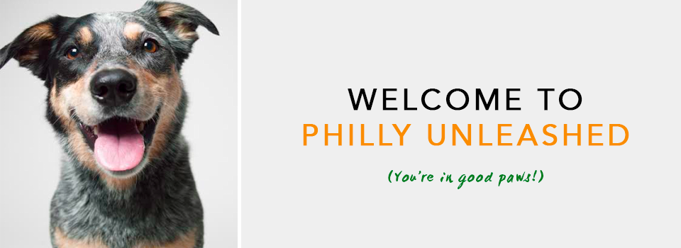 Welcome-to-Philly-Unleashed