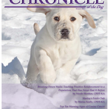 Nicole was so excited to be asked to write for APDT's Chronicle of the Dog!