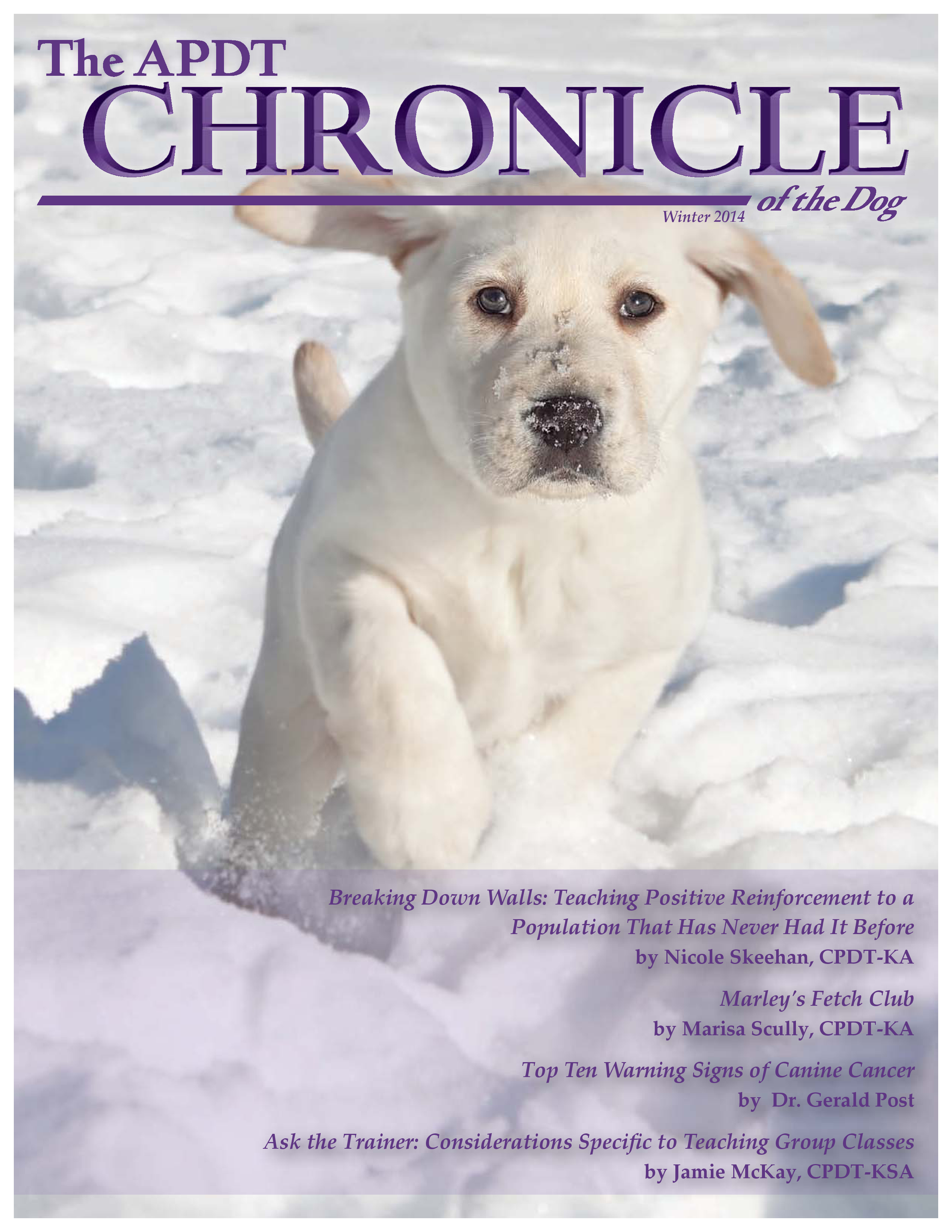 We were so excited to be asked to write for APDT's Chronicle of the Dog!